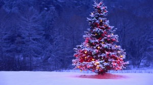 tumblr_static_decorated-christmas-tree